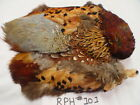 Ring-neck Pheasant Skin, Fly Tying, Feathers Crafts  (You Choose skin) RPH