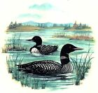 Loon on the Lake Select-A-Size Waterslide Ceramic Decals Xx  image