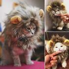 Fancy Pet Costume Cute Lion Mane Cat Hat Wig Cosplay Lion Faux Fur With Ears LD
