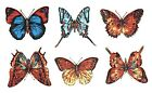 Butterfly Butterflies Select-A-Size Waterslide Ceramic Decals Xx