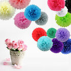 "6""-14"" Wedding Party DIY Tissue Paper Pompoms Pom Poms Flower Balls Decorations"