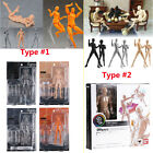 Figma Archetype Next He/She PVC Action Figure Collection Anime Model Body Toys