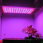 5M 16.4FT 72W LED Plant Grow Light Bars Red+Blue Strip Lights Hydroponic DC12V
