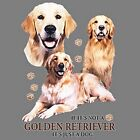 If Not Golden Retriever Just a Dog Sweatshirt Pick Size Small to 5 X Large