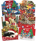 Advent Calendar for Your Dog Cat Battersea Dogs and Cats Home Treats Snacks Pet