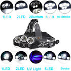 80000LM 5x XML T6 LED Headlamp 5 Modes Purple/White Light Charge by Micro USB