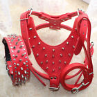 Red Leather Spiked Studded Dog Harness&Collar&Leash SET Pit Bull Mastiff Terrier