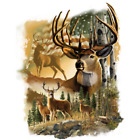 American Deer Size Youth Medium to 6 X Large T Shirt Pick Your Size image