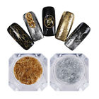 Nail Art Glitter Sequins Dust Lot UV Gel Acrylic Powder Flakies Decoration Tips