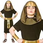 Boys Pharaoh Egyptian King Fancy Dress Book Day Costume Historical Kids Outfit