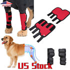 Pets Dog Health Care Knee Pads Protector Preventing Injury Help Wound Healing US