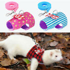 Kyпить Leash Ferret Harness Guinea Pig Hamster Squirrel Rat Rabbit Clothes Hamhter Lead на еВаy.соm