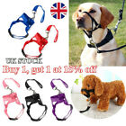 Nylon Dog Muzzle Strap Halti Head Collar Stops Nose Reigns Pet Pulling Halter