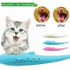 Pet Cat Tooth Toy Fish Shape Catnip Flavor Silicone Molar Stick Teeth Clean Toys