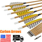 """SP500 Carbon Arrows 30"""" with Turkey Feather for Archery Target Hunting Shooting"""