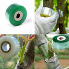 100/120M Garden Tree Seedling Nursery Self-adhesive Stretchable Grafting Tape US
