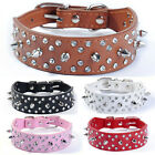 Brown Leather Bling Rhinestone Crystal Spiked Studded Pet Dog Collar Size S M L