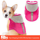 Dog Harness No Pull Pet Harness Adjustable Fashion Vest for Puppy Mesh Harness