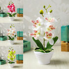 Accessories Artificial Flower Home Fake Potted Plant Decorations Ornaments