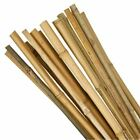 Bamboo Canes Stakes Sticks Plant Support Shrub Heavy Duty Strong Hydroponics