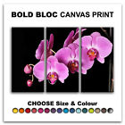 Orchids Flowers FLORAL  Canvas Art Print Box Framed Picture Wall Hanging BBD