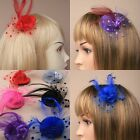 Small Coloured Hat Fascinator on a Forked Beak Clip Netting and feathers wedding