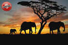 African Elephants Sunset Silhouette Poster Print Wall Art Premium Picture 30x20