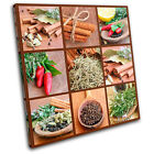 Spices Collage chili Food Kitchen SINGLE CANVAS WALL ART Picture Print VA