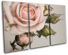 Rose shabby chic Vintage TREBLE CANVAS WALL ART Picture Print VA