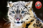 "Animal Big Cat Leopard Poster Print Wall Art Premium Modern Picture Photo 14""x10"