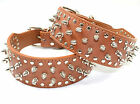 New Premium Quality Leather Large Breed Dog Spiked and Studded Collar Brown M L