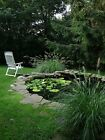 New Garden Pond Liner 5.7m Wide - Suitable for Fish - Plants - Water Feature