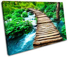 Forest Stream Landscapes SINGLE CANVAS WALL ART Picture Print VA