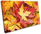 Autumn Leaves Floral SINGLE CANVAS WALL ART Picture Print VA