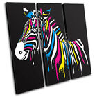 Abstract Zebra Animals TREBLE CANVAS WALL ART Picture Print VA