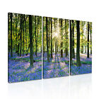 NATURE Landscape 8 3A Canvas Framed Printed Wall Art ~ 3 Panels ~ More Size