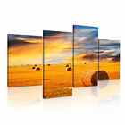 LANDSCAPE Country 3 Canvas 4A-RH Framed Printed Wall Art ~ 4 Panels