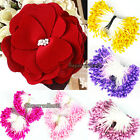 Artificial Double Tip Floral Stamen Flower Filler Card Decoration for Party 270