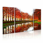 Holland 1 Europe Cityscape 3B Framed Print Canvas Wall Art~ 3 Panels