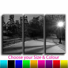 New York Central Park Treble Canvas Wall Art Picture Print 19 TE