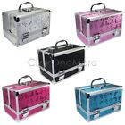 PLE - Aluminum Beauty Box Cosmetic Make Up Jewellery Saloon Case