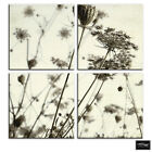 Meadow Vintage Black/White Floral BOX FRAMED CANVAS ART Picture HDR 280gsm