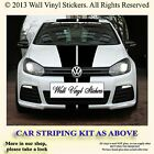 CAR STRIPES DECALS STICKERS STRIPING KIT  COMPLETE SET   6