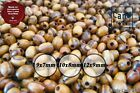 Beads OVAL HOLY LAND Olive Wood Various Size TOP QUALITY POLISHED FREE SHIPPING