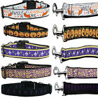 Adjustable Durable Ribbon Nylon Dog Collar And Leash set19