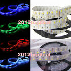 5M Double Row 5050 SMD 600 RGBW RGBWW RGB White Flex LED Strip light 120led/M