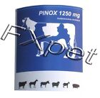 Pinox comprettae Bovine cows, horse mares, she-asses, sheep, goats, swine sows