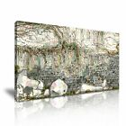 Contemporary Vines Climbing On Wall Canvas Modern Home Wall Art Deco