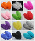 Wholesale 10-100pcs High Quality Natural Ostrich Feathers 6-8inches / 15-20cm