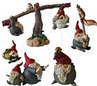 Bella Collection Ornaments - Gnomes